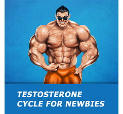 Testosterone cycle for newbies