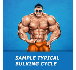 Sample Typical Bulking Cycle