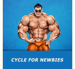 Cycle for the newbies
